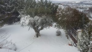 Neve a Montesilvano, di Anna e Betty