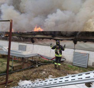incendio allevamento basciano