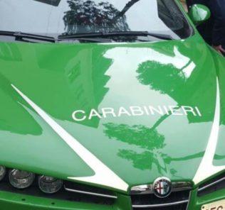 carabinieri-forestali