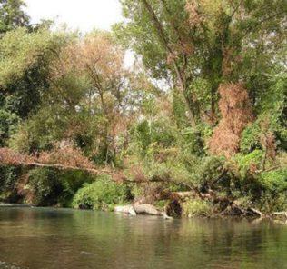 fiume-pescara