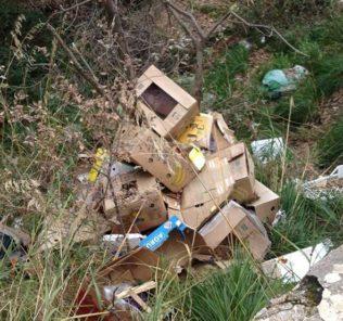 rifiuti bosco