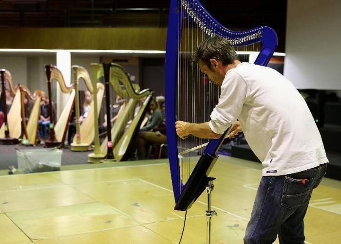 Raoul Moretti, arpa elettrica