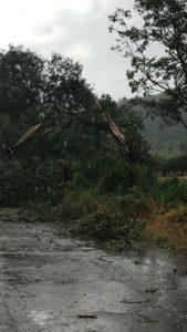 Disagi e danni a Villareia di Cepagatti (foto Alessandro Ventura)