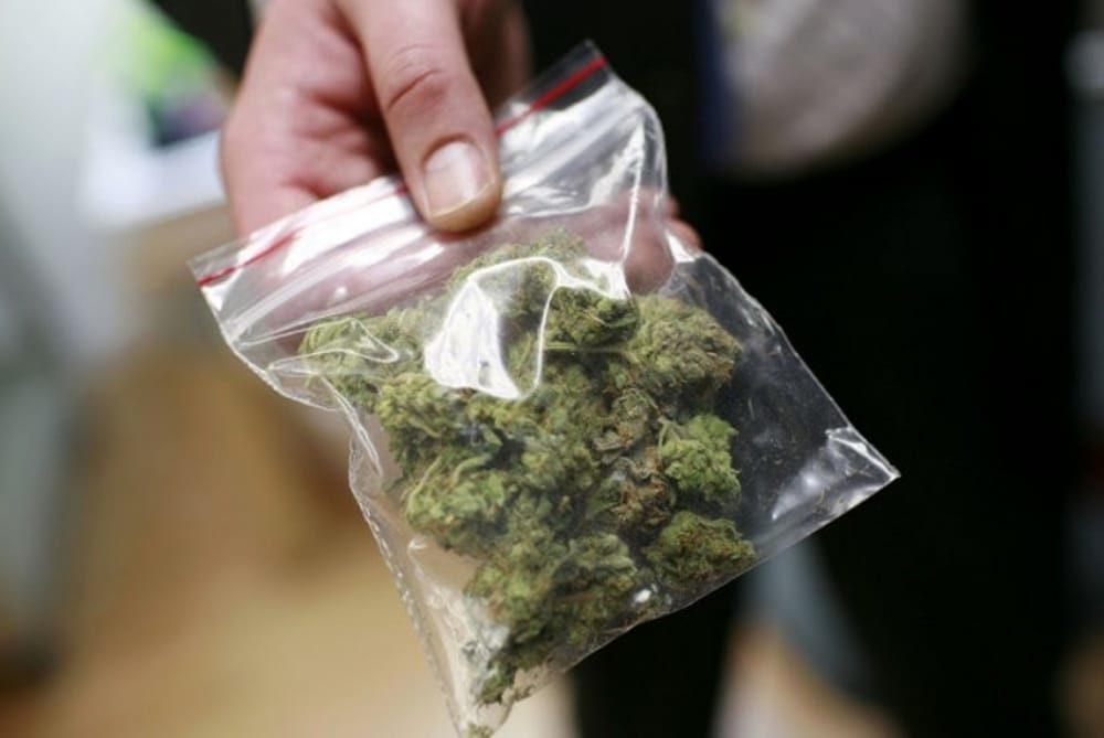 marijuana-bustina