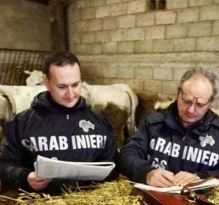 carabinieri-nas-controlli-aziende-agricole