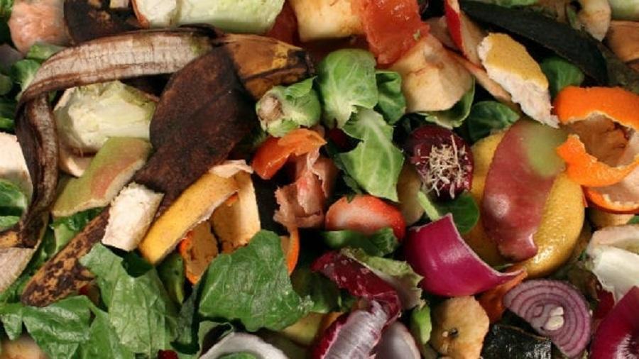 raccolta-differenziata-organico