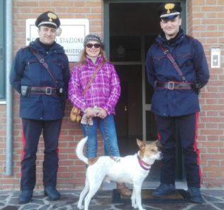Fiocco, cane ritrovato da Carabinieri dopo 3 giorni di ricerche a Schiavi di Abruzzo (Chieti)