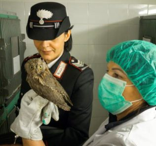 carabinieri-animali