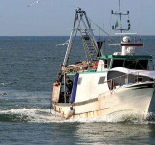 pesca02