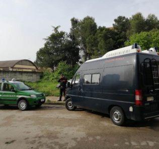carabinieri forestali a rancitelli